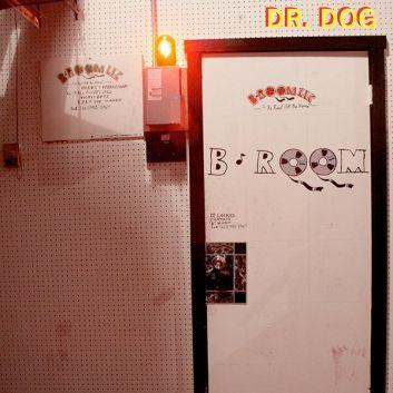 B-RoomDrDog