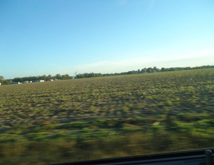 field pic