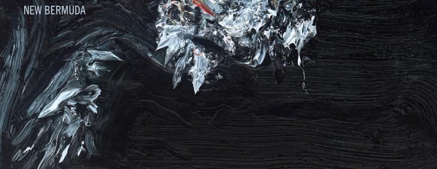 dfhvn-newbermuda-cover-f-rgb
