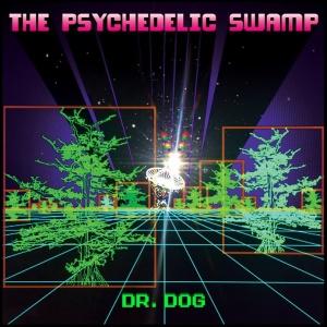 dr dog album over